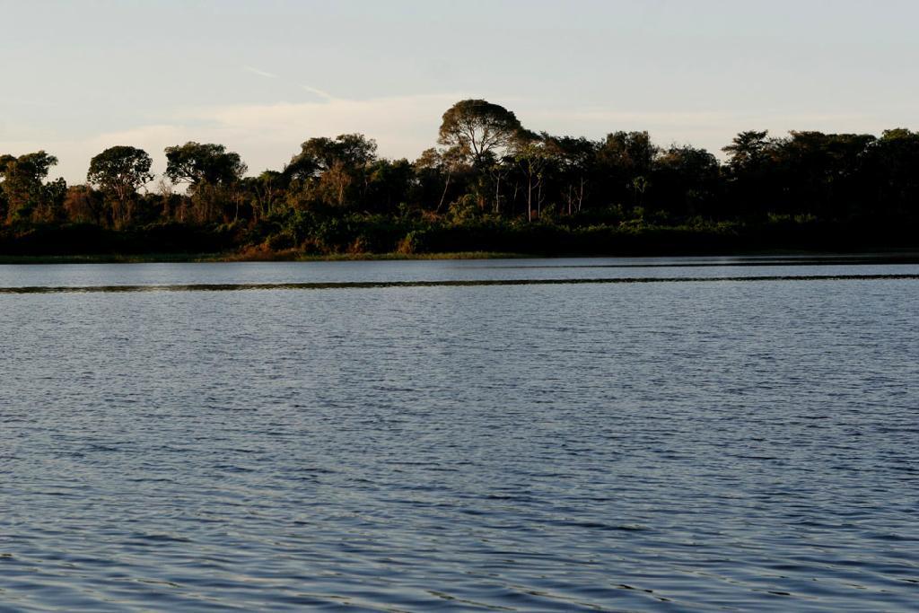 Mato Grosso alcançou 96% das metas do Progestão 2019