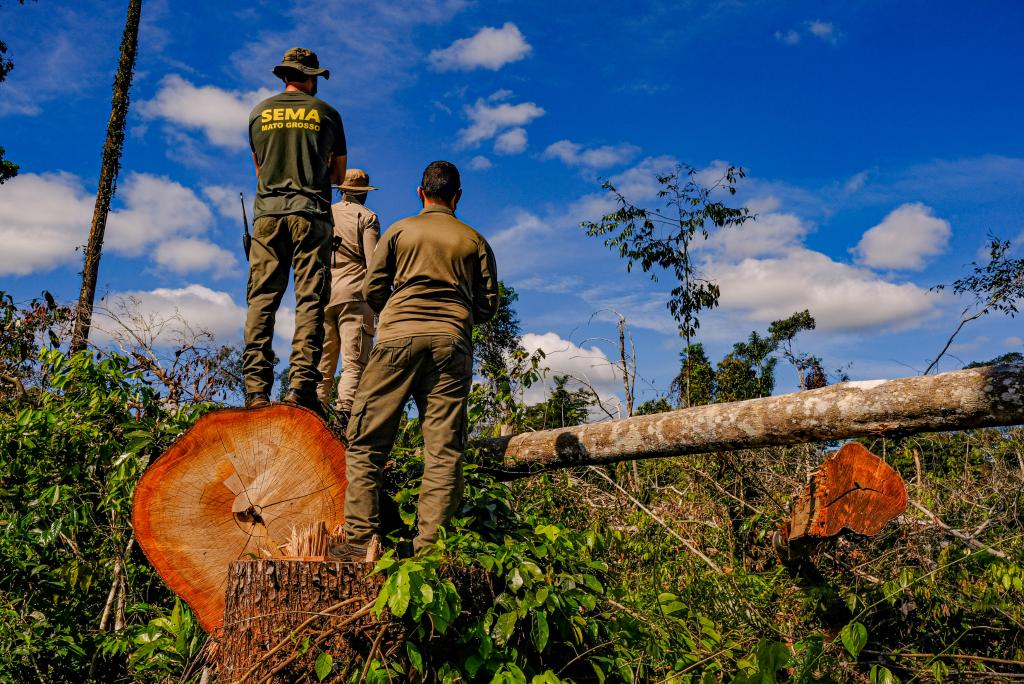 Multas ambientais poderão ter desconto de até 30%