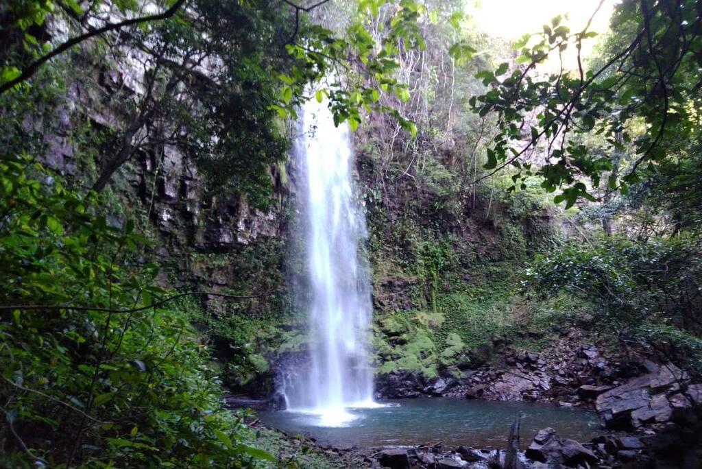 Sema e Comitê visitam áreas degradas na Reserva do Cabaçal