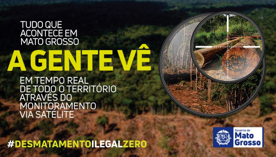 Tolerância zero ao desmatamento ilegal
