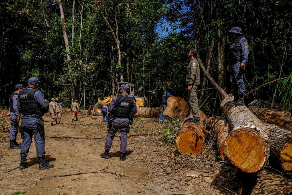 Estado já aplicou R$ 620 milhões em multas ambientais e endurece medidas contra infratores
